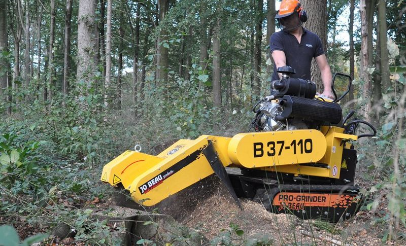 Buy or rent a stump grinder? We'll get you started ...