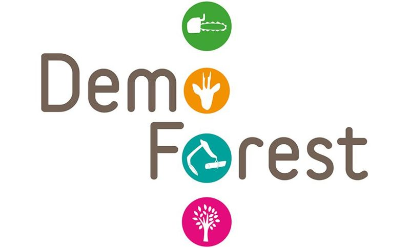 Demo Forest - 30-31 juillet 2019
